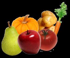 Здоровое питание: овощи и фрукты