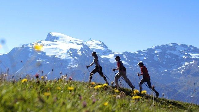 Велнес туризм: скандинавская ходьба в Альпах