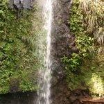 Сент-Люсия, водопад