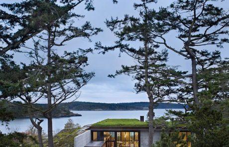Монолитный дом Пьер, зеленая крыша