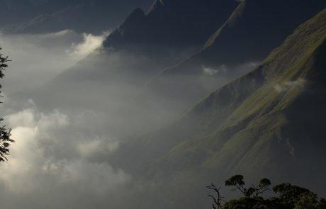 Горы Западные Гаты, покрытые туманом, Индия