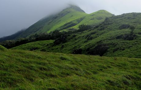 Горы Западные Гаты, Керала, Индия