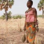 Atacora Women's, африканская женщина держит плоды баобаба