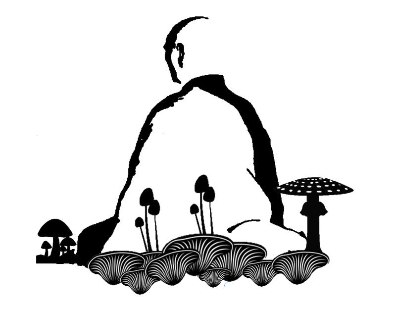 Пионер туризма магических грибов ритрит Myco-Meditation