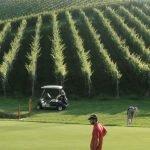 Игра в гольф на Золотом холме в Словенских Коньицах