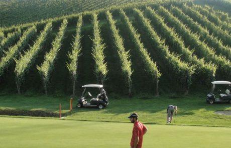 Активный отдых в Словении, гольф на Золотом холме в Коньицах