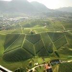 Поле для гольфа с 9 лунками на Золотом холме в Словенских Коньицах