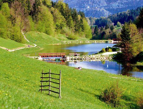 Велнес курорты Словении. Терме Зрече и Рогла