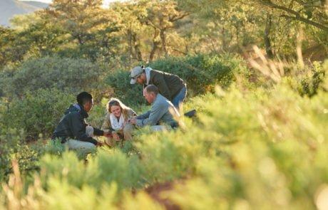 Отдых в ЮАР, сафари в Tswalu Kalahari, изучение флоры Калахари