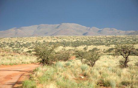 Заповедник Tswalu Kalahari