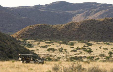 Сафари на автомобиле в Tswalu Kalahari