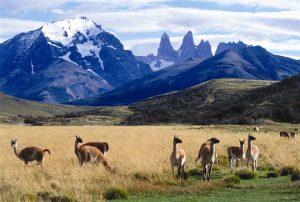 Приключенческий туризм в Патагонии
