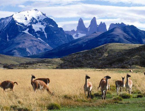 Приключенческий туризм в Патагонии, Tierra Patagonia