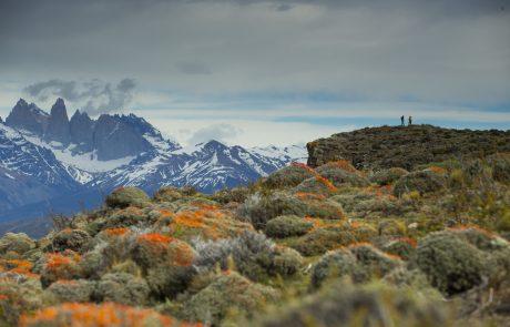Пешие походы в Национальном парке Torres del Paine, Чили