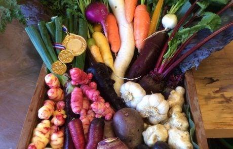 Aro Ha Wellness Retreat, вегетарианская кухня