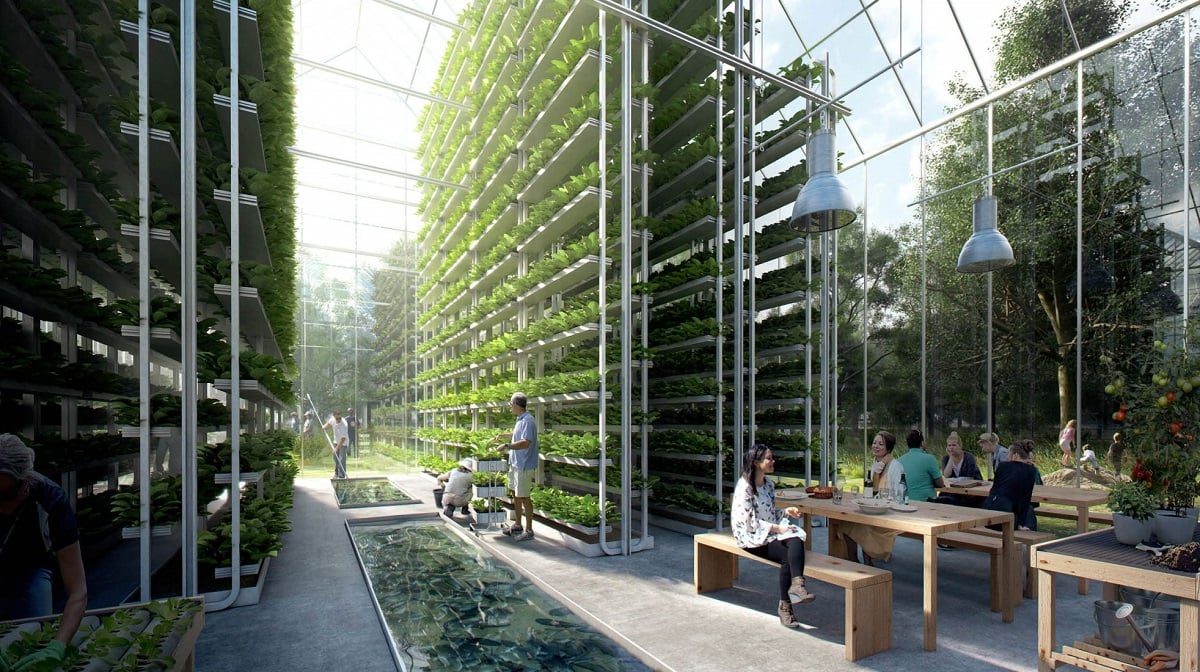 Зеленое строительство: вертикальные грядки