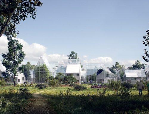 Зеленое строительство: экологический дом и здоровье человека