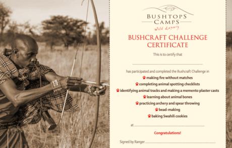 Сафари в Африке, сертификат Bushcraft Challenge
