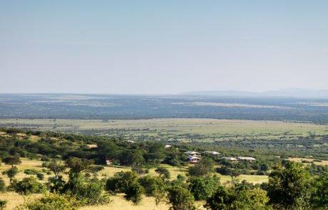 Лагерь Mara Bushtops, вид сверху