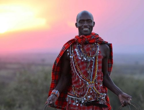 Отдых в Африке: лучший сафари тур в Масаи Мара