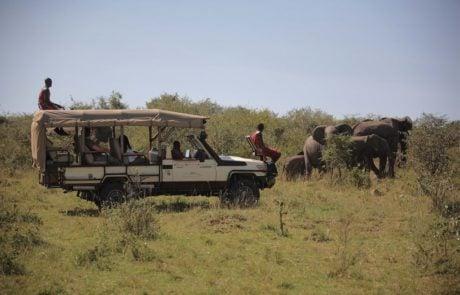 Сафари в Африке, поездка на автомобиле