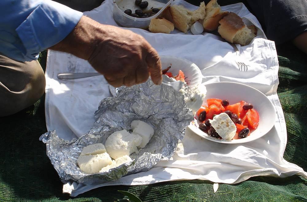 Средиземноморская диета, меню фермеров в Греции, обед во время сбора урожая оливок