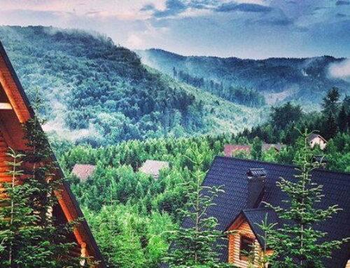 Развитие wellness туризма в Западной Украине