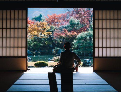 Секрет долголетия японцев — японский велнес